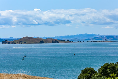 Browns Island - Motukorea