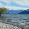 Lake Manapouri - en route to Doubtful Sound cruise