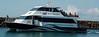 Tiritiri Matangi ferry