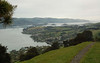 Looking ahead to mouth of Otago Harbour from the ridge
