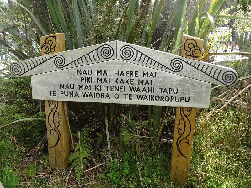 Waikoropupu Spring: a holy place to the Maori