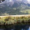Queenstown to Milford Sound NZ