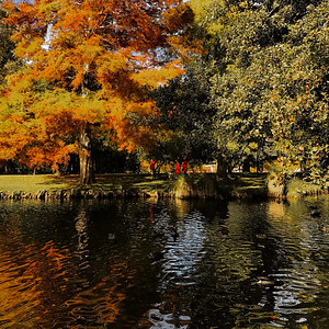 Queenstown Park