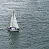 Bay of Islands 3_4 002