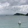 Bay of Islands 3_4 001