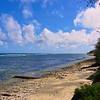 Tonga One - Nuku Alofa 3_10 012