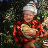 11001-70813  Kakapo (Strigops habroptilus) the late Don Merton with 'Waynebo' in the forest on Pearl Island. Waynebo fathered at least eleven kakapo chicks before he died in January 2012 *