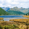11001-51512 Takahe (Porphyrio hochstetteri) habitat in summer - the photograph was taken in February 1973 - showing Lake Orbell (also known as Wai-o-Pani or 'lake of the friendless'). This same area was considered by Herries Beattie to be the place Ngatimamoe knew as Kohaka takahea. Murchison Mountains *