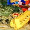 11001-71817 Kea or mountain parrot (Nestor notabilis) captive bird playing with toys