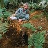 11001-10009 Stewart Island brown kiwi, or tokoeka (Apteryx australis lawryi), Sir David Attenborough, filming for the BBC series 'Life of Birds' on Bravo Island sits behind a tokoeka burrow at dusk*