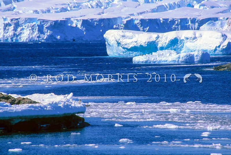 11001-26725 Adelie penguin (Pygocelis adeliae) view of Antarctic coastline with distant penguins