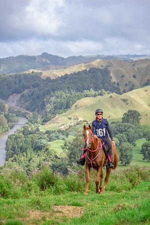 Waikato Endurance Group