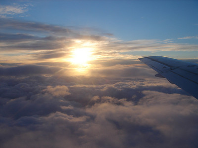 flight back to Hamilton