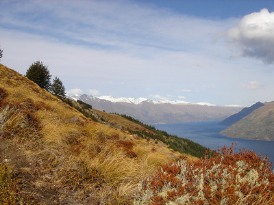 amazing Queenstown area landscape