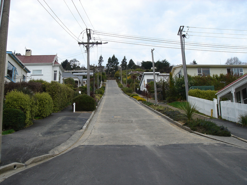 Baldwin Street, the world steepest street