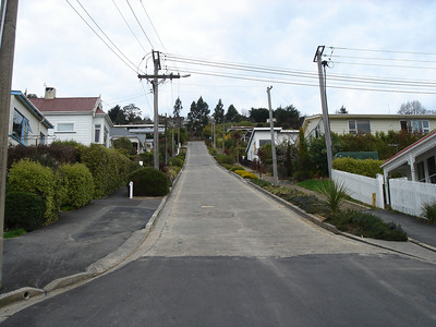 Baldwin Street, the world steepest street