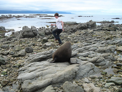 Dan went to pose near this large sea lion that had not moved in a while.  It then unleashed a large roar and Dan ran away like a little girl.