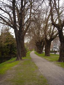 park in Christchurch