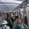 To the Tiritiri Matangi Island ferry