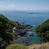 Tiritiri Matangi Island View