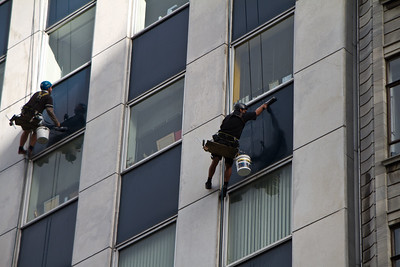 Auckland Window Cleaners