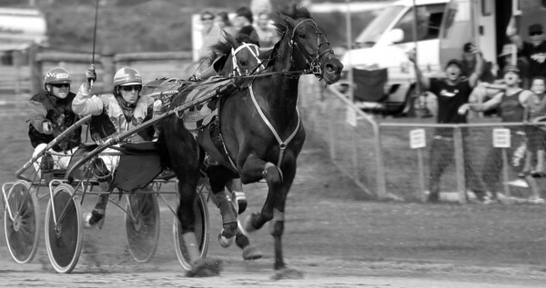 The town beside Nelson - Richmond - was advertising an afternoon Harness Horse Race, which excited Heather so we went.  It was a great time, as well as very photogenic.  And we won 50 cents!