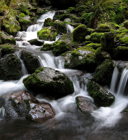 This is my favorite of all the water shots I took on my trip.  Quintessential NZ wilderness if you ask me.