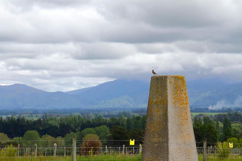 stone marker stonehenge nz