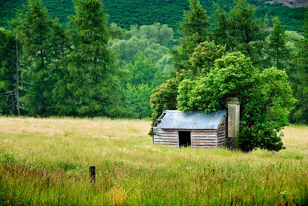 Wooden cottage Burkes Pass