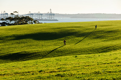 Kids gamboling across green meadows on a clear July afternoon at Bastion Point Auckland New Zealand