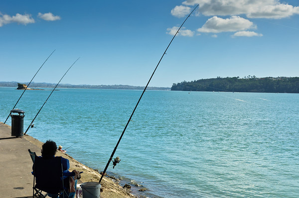 Afternoon fishing Waitemata Harbour Auckland New Zealand