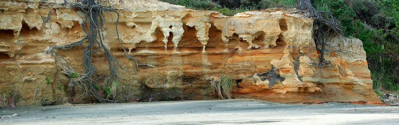 Sandstone cliff Awhitu Peninsula New Zealand - 3 Sep 2006