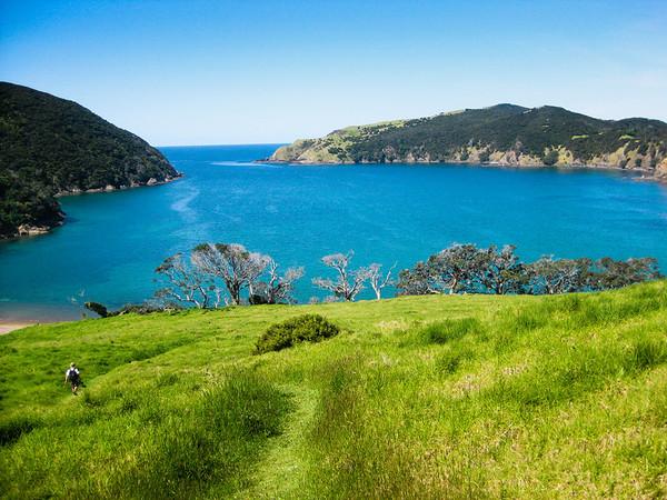 Whangamumu harbour Bay of Islands New Zealand