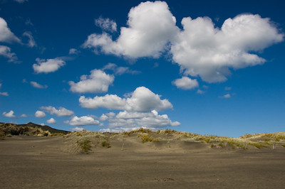 Sand dunes Bethells New Zealand - 9 Apr 2007