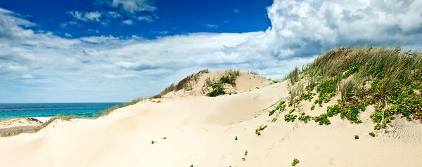 Sand dunes Ocean Beach Bream Head New Zealand