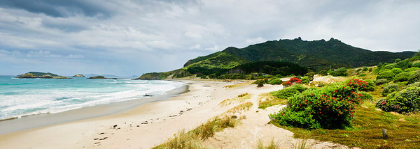 Ocean Beach Bream Head North Island New Zealand