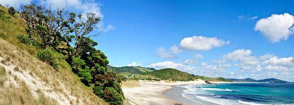 View of Ocean Beach from the south end promontory Bream Head New Zeland
