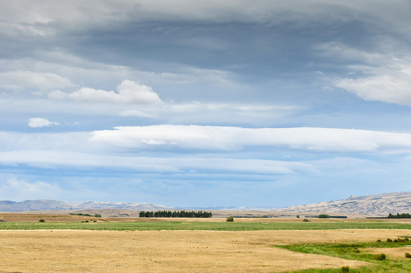 Dry pastures Maniototo South Island New Zealand