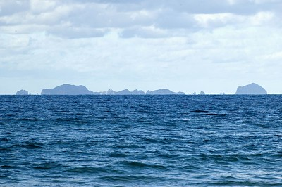 The Alderman Islands from Hot Water Beach New Zealand - 2 Jul 2005