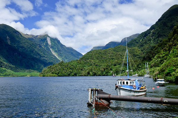 Boat moorings Doubtful Sound Fjordland South Island New Zealand