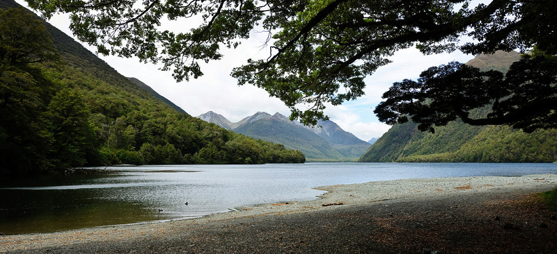 Lake Gunn Fjordland National Park South Island New Zealand