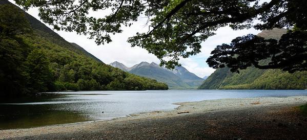 Lake Gunn Fjordland National Park South Island New Zealand