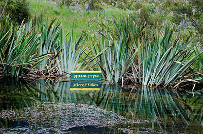 Mirror Lakes Fjordland National Park New Zealand