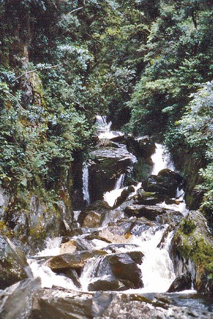 Waterfall Manapouri New Zealand - May 1978