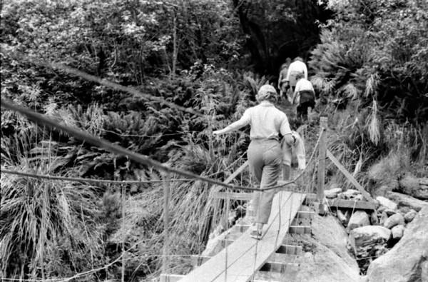 Bridge crossing Routeburn track Fjorland New Zealand - 197X