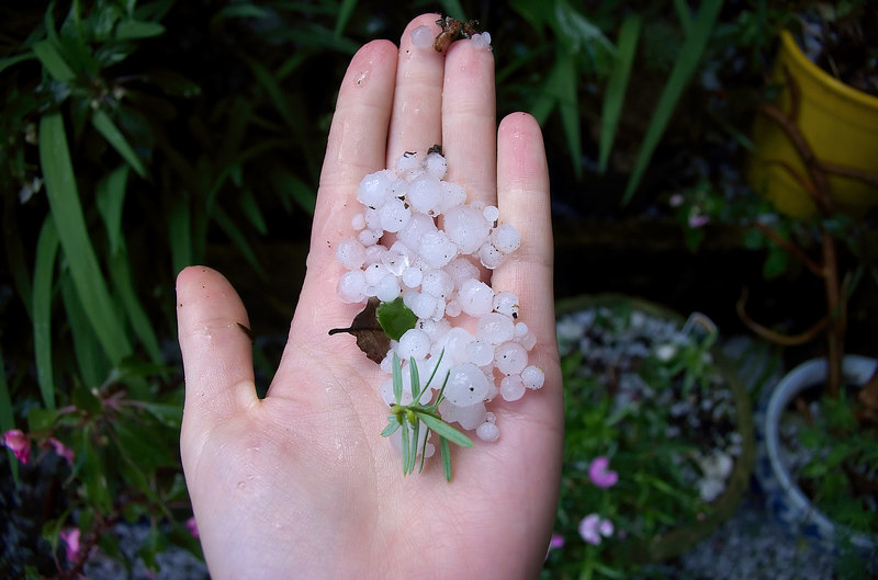 Hail stones in Lan's hand Moana Ave Onehunga Auckland New Zealand - 10 Oct 2006