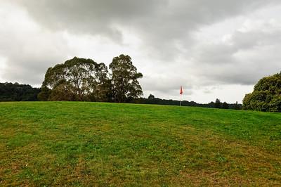 Green Golf course Hamurana