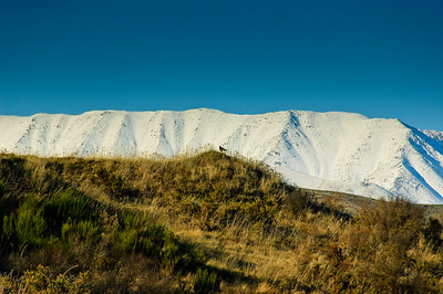 St Bathans range Central Otago