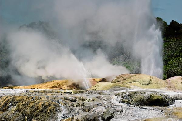 Pohutu geyser erupting at Whakarewarewa
