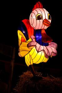 Lantern festival Albert Park Auckland